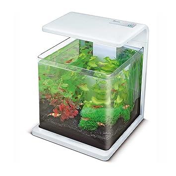 aquadistri SF Wave 15 Acuario Blanco, 18 L: Amazon.es: Productos para mascotas
