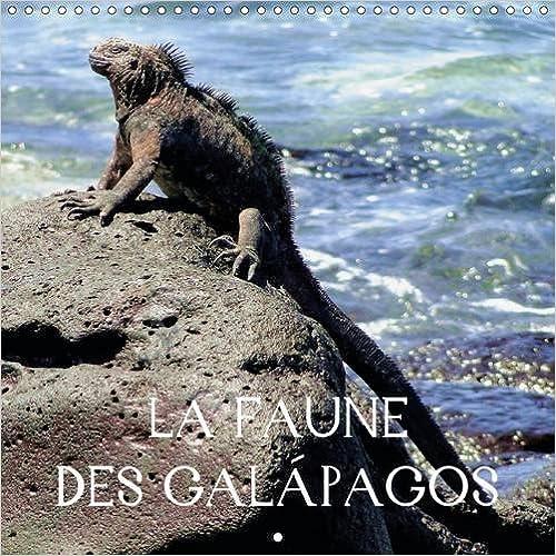 Livres gratuits en ligne La faune des Galapagos : Des images fascinantes d'animaux aux Galapagos, que vous pourrez découvrir de première main lors de la visite des îles pdf