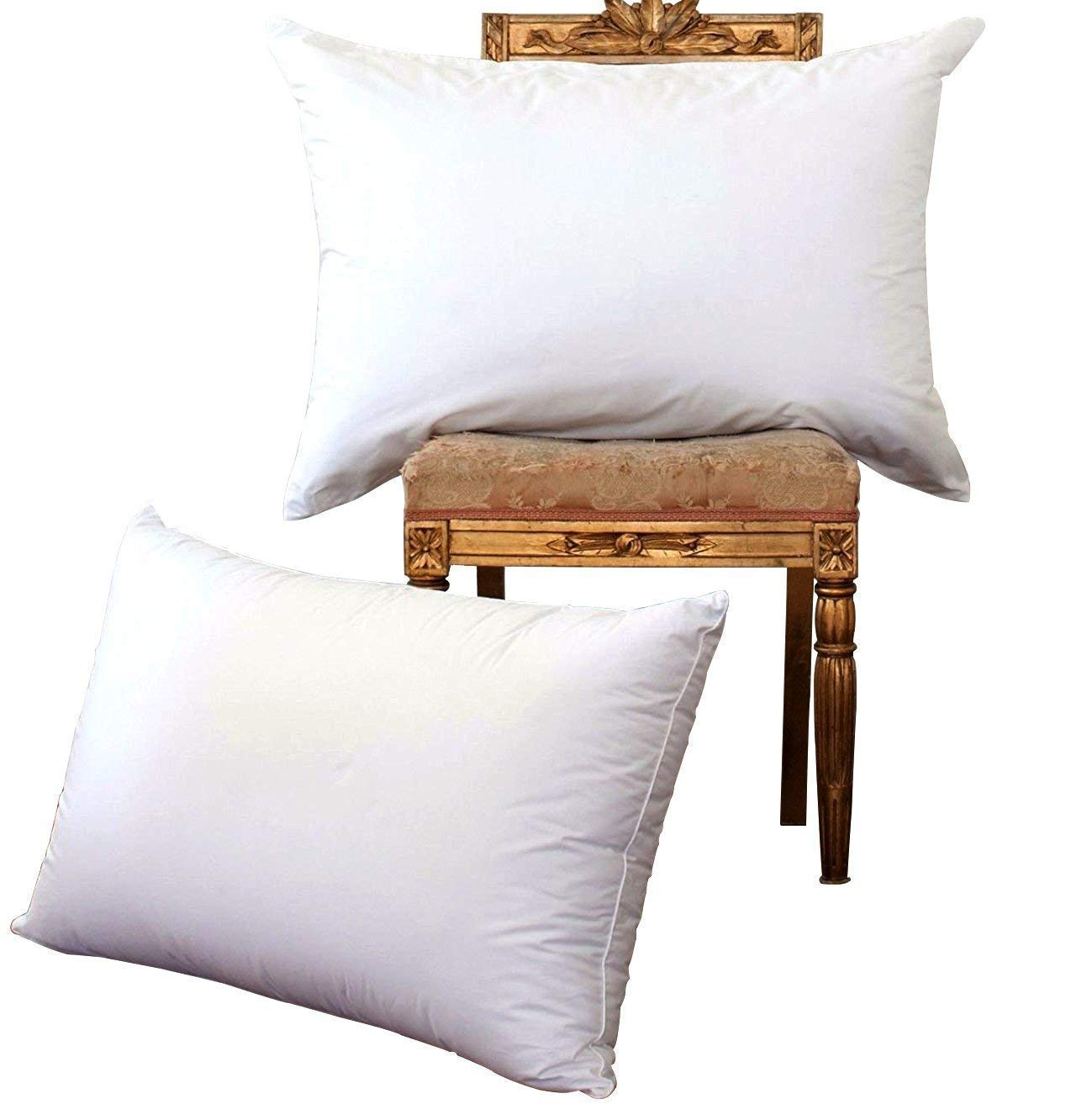 NP luxury White Goose down pillow(2-pack,Queen,Soft) 100% Egyptian Cotton Cover,1200 Thread Count,Bed pillows for Sleeping,Hypoallergenic by NP