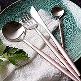 Awareisn Silverware 4 Piece Stainless Steel Flatware Set Including Fork Spoons Knife Tableware (Matte Pink Handle and Silver)