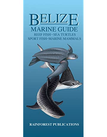 Belize Marine Guide