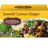 Celestial Seasonings Ginger Teas Review and Comparison