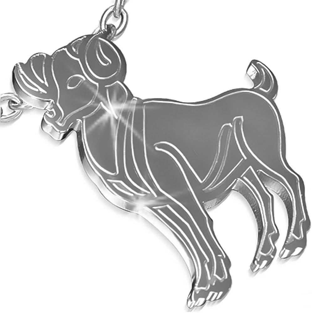 Pendentif Zodiaque et Signe Astrologique b/élier Homme en Acier Inoxydable ZP0155 ZENSE