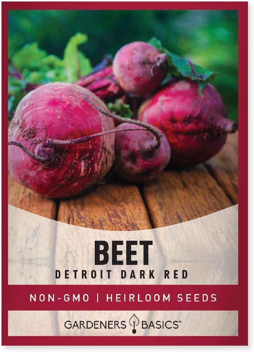 Beet Seeds for Planting Detroit Dark Red 100 Heirloom Non-GMO Beets Plant Seeds for Home Garden Vegetables Makes a Great Gift for Gardeners by Gardeners Basics