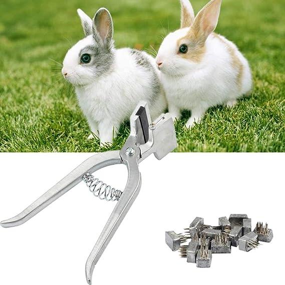Rhww Animal Kit De Tatuaje Conejo Utilizar Mascotas Herramientas ...