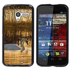 TopCaseStore / la caja del caucho duro de la cubierta de protección de la piel - Nature Beautiful Forrest Green 76 - Motorola Moto X 1 1st GEN I XT1058 XT1053 XT1052 XT1056 XT1060 XT1055