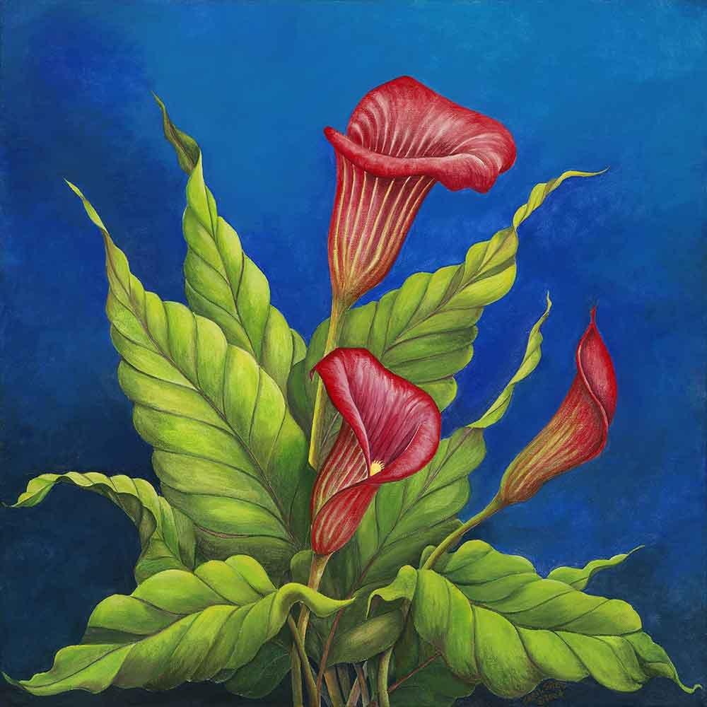 Vangohart Louis Leonard Art - Red Calla Lilies - Artist Carol Sabo, Canvas Giclee Wall Art Print, Framed by Vangohart