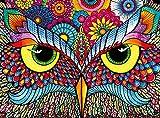 Buffalo Games - Vivid Collection - Owl Eyes