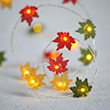 Impress Life Christmas Decor String Lights, 10ft 40LED Maple Leaf Fairy Light Silver Wire Battery Operated with Remote…