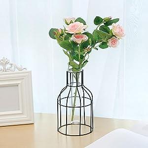 EKDJKK Metal Frame Vase Tube Glass Planter with Geometric Black Metal Stand,Office Desktop Home & Office Decor Handmade
