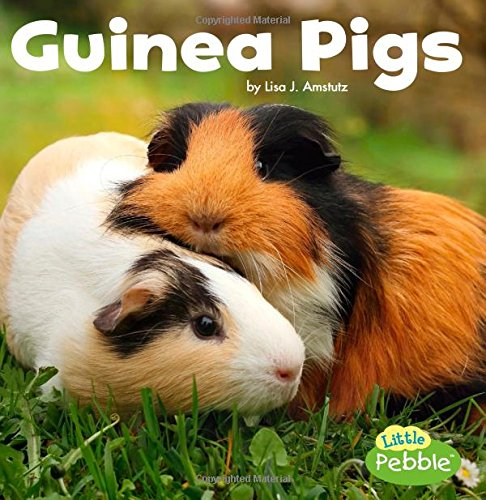 Guinea Pigs (Our Pets)
