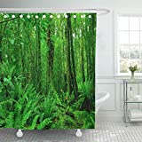 Staroind Shower Curtain 72x72 Inches Blue Landscape Mirror Lakes Along The Way to Milford Sound New Zealand Yellow Mildew Resistant Machine Washable