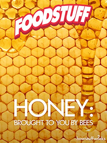 Honey: Brought to You by Bees