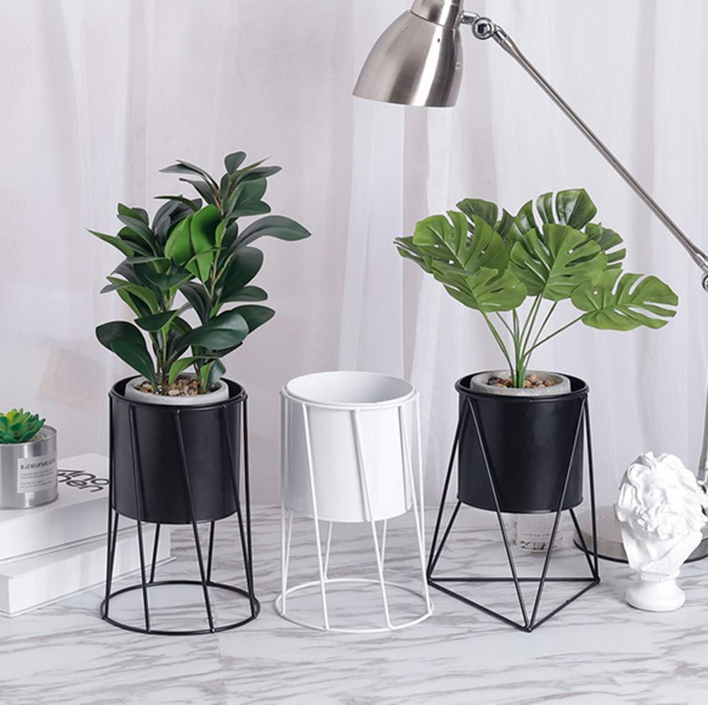 Amazon.com: DODXIAOBEUL - Juego de 2 plantas suculentas ...