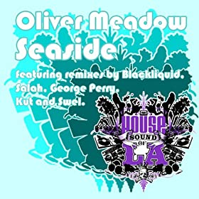 seaside kut and swel mix oliver meadow from the album seaside november