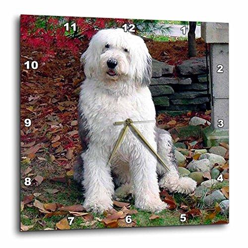 3dRose dpp_1070_3 Old English Sheepdog Wall Clock, 15 by 15-Inch