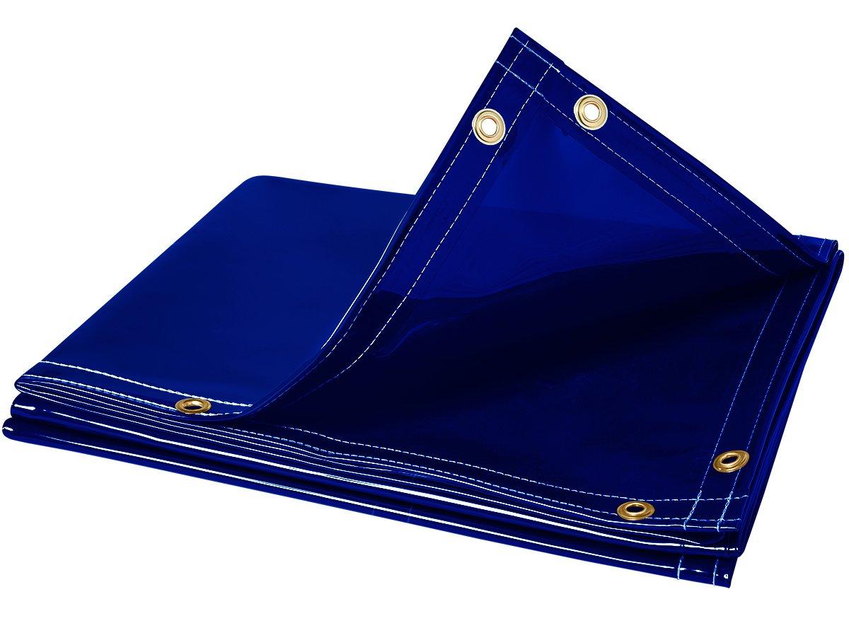 Steiner 325-6X8 Arcview 14 Mil Flame Retardant Tinted Transparent Vinyl Welding Curtain, Blue, 6' x 8' 6' x 8' ERB