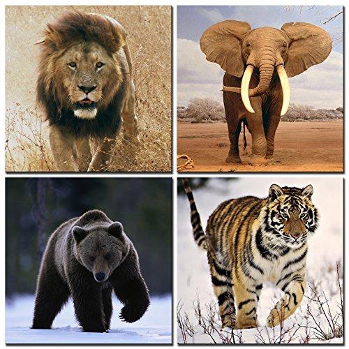 Canvas Prints Lion Elephant Bear Tiger Animal Pictures