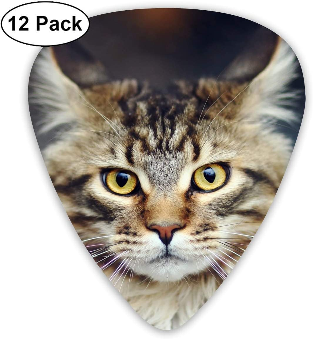 12 Pack Guitar Picks Maine Coon Cat Think, Medium and Heavy,Unique Guitar Gift for Bass, Electric & Acoustic Guitars: Amazon.es: Instrumentos musicales