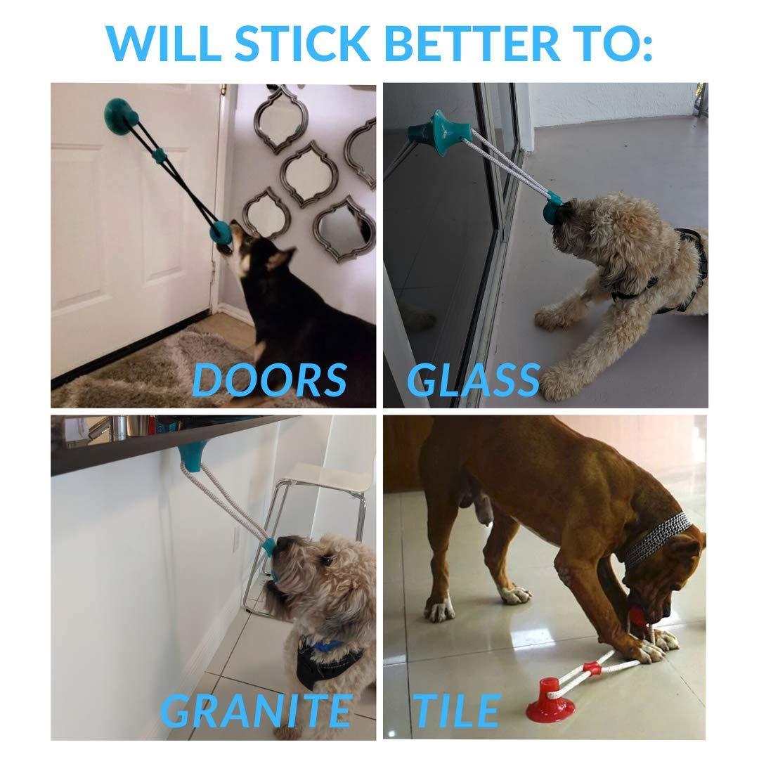 resistente a las mordidas no t/óxica multifunci/ón cuerdas interactivas juguete con ventosa juguete molar Juguete para perro KTL pelota de goma juguetes para perro azul duradero