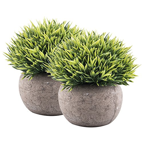 Fasmov Mini Fake Plants Plastic Green Grass of Plants with Pots – Set of (Plastic Artificial Grass Plant)