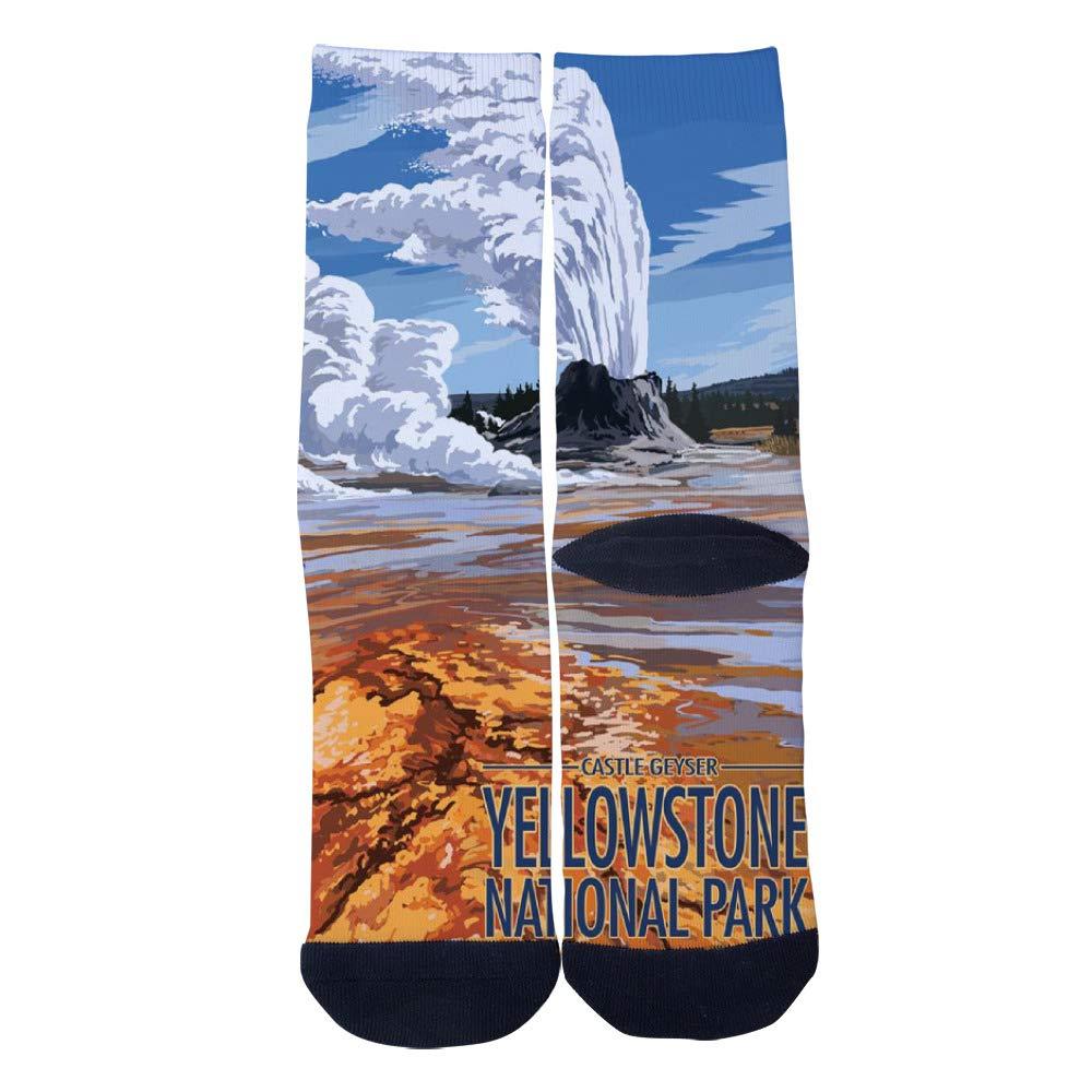 Yellowstone National Park Wyoming Castle Geyser Socks Mens Womens Casual Socks Custom Creative Crew Socks