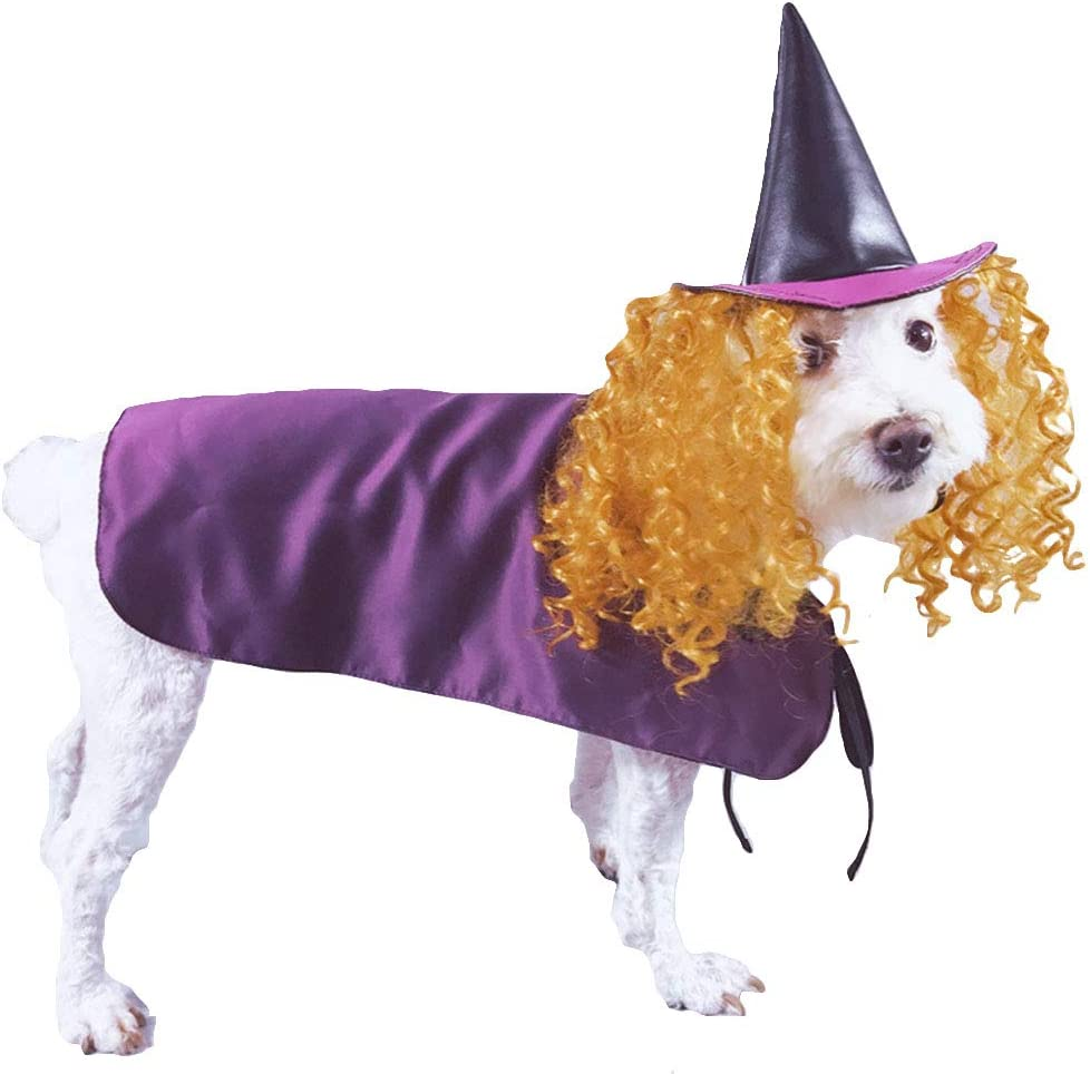 S Yu-Xiang Dog Halloween Wizard Hat and Cloak Pet Costume Mantle with Necromancer Accessories Wig Funny for Dogs Cats and Easter Christmas