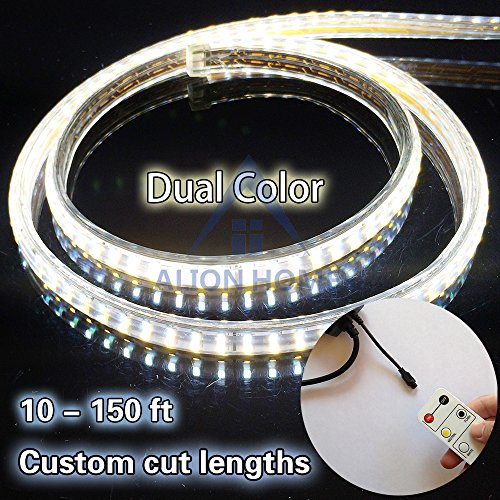 Dual Color Led Rope Light - 2