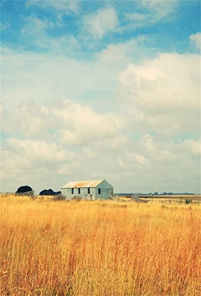 AOFOTO 5x7ft Old Farm Hay Field Photography Background Rustic House Backdrop Countryside Village Fall Scenic Sky