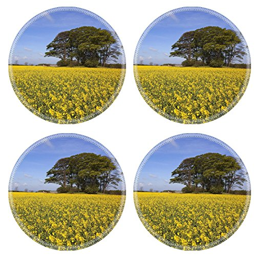 MSD Round Coasters Non-Slip Natural Rubber Desk Coasters design 20017214 a grove of trees growing on an ancient prehistoric burial mound surrounded by golden canola flowers under a hazy blue spr (1 Flower Tree 2 Mound)