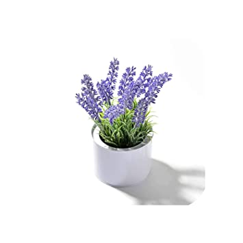 Amazon Com Diremo Artificial Lavender Flowers Iron Vase