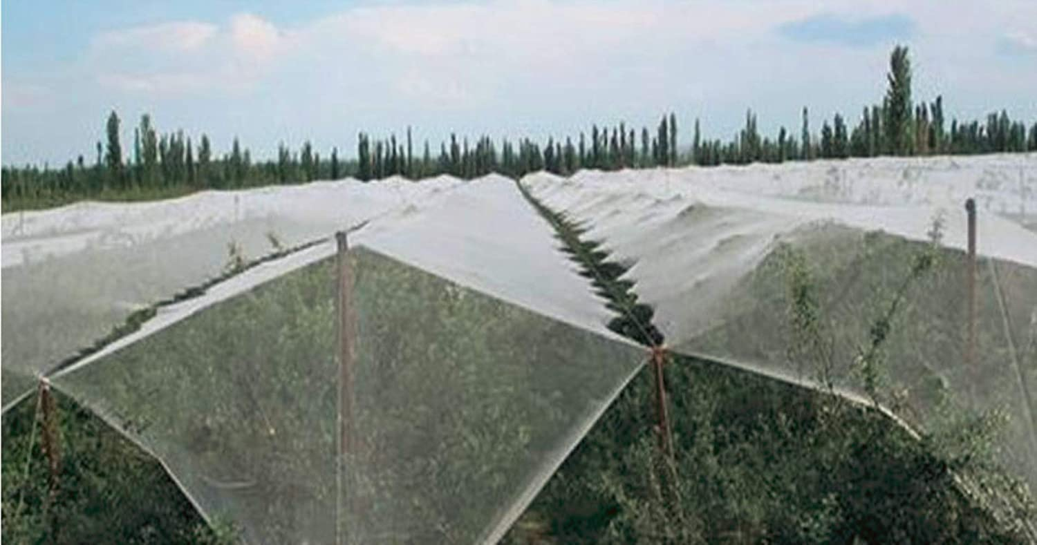 Mitef Anti-Aging Orchard Anti-Hail Netting Vegetable Garden Hail Protect Netting,6.5x30ft