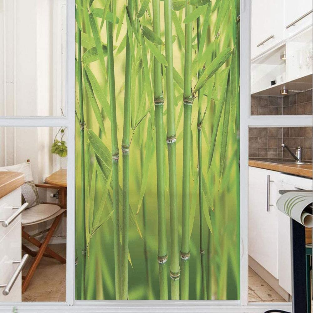 Decorative Window Film,No Glue Frosted Privacy Film,Stained Glass Door Film,Close up of Bamboo Sprouts Stems Nature in Tropical Rain Forest Wildlife Asian Zen Decor Decorative,for Home & Office,23.6In