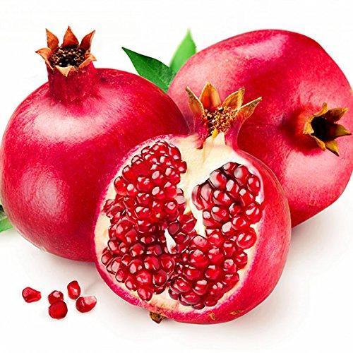 (30Pcs/Pack Pomegranate Seeds Sweet Delicious Indoor Fruit Seeds Pomegranate Mini Bonsai Tree)