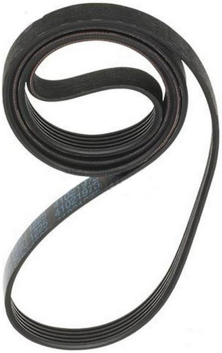 Condor Fitness Bras Blaster pour Biceps et Triceps Halt/ères et halt/ères Curls Muscle Builder Biceps pour Musculation de Bras Gros Bras Support dhalt/érophilie