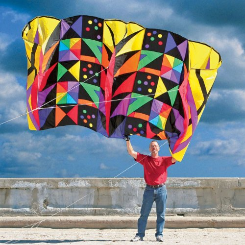 Mega Power Sled Kite 81 by Premier Kites