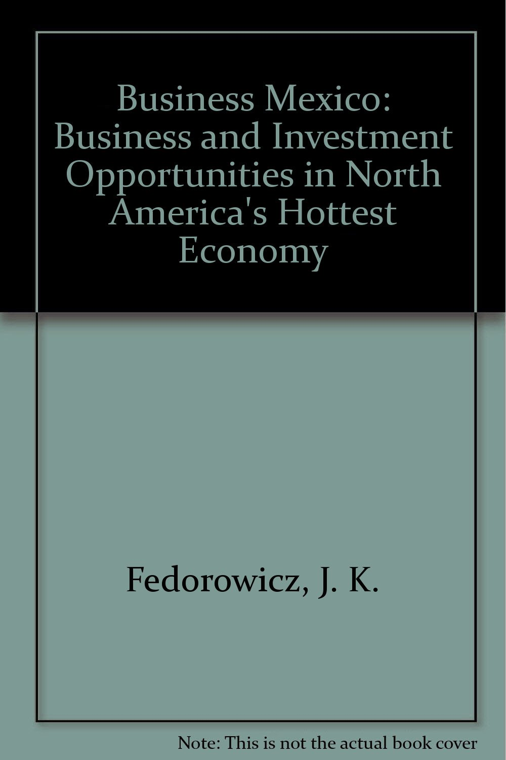 Business Mexico: Business and Investment Opportunities in North America's Hottest Economy