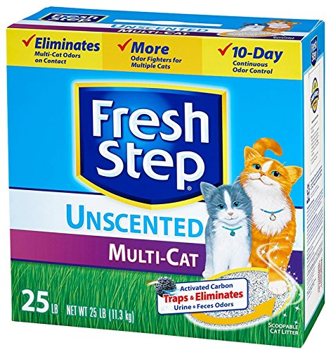 Best Rated Unscented Cat Litter
