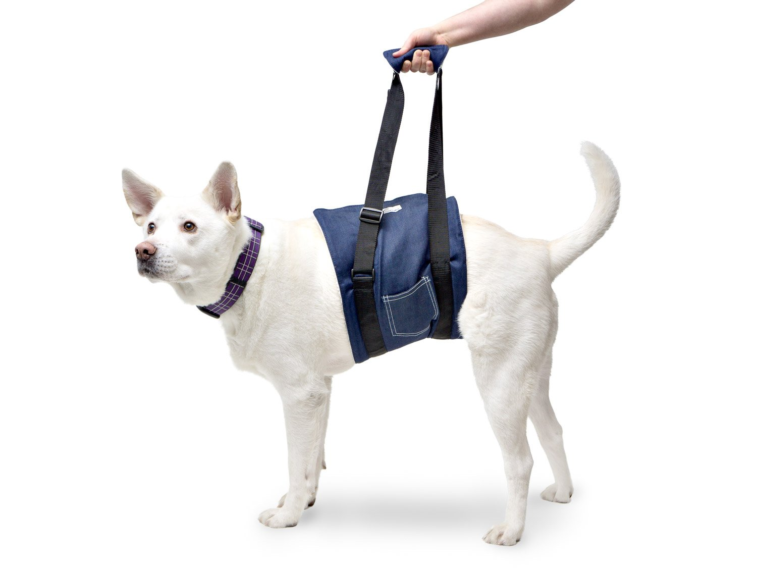 Walkin' Dog Support & Rehabilitation Harness/Sling by Walkin'