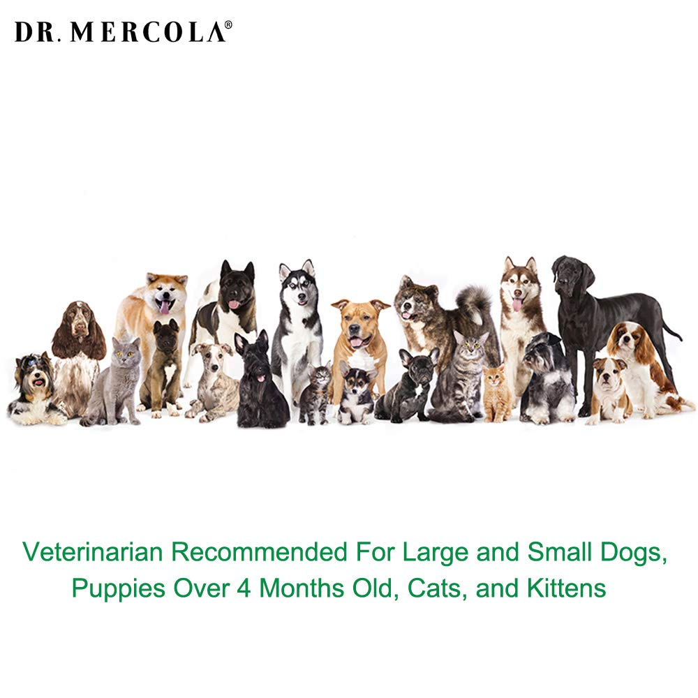 Dr. Mercola Herbal Repellent Collar For Large Dogs with Natural Active Ingredients, Long-lasting Flea Prevention - Odorless, Safe and Waterproof Flea Collars Effective Up To 4 Months, Necks up to 27'' by Dr. Mercola (Image #6)