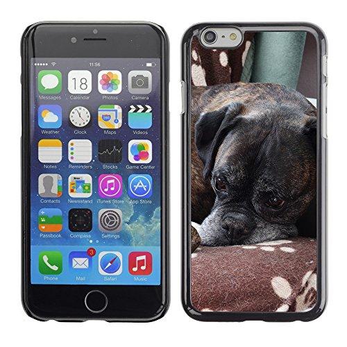 """Premio Sottile Slim Cassa Custodia Case Cover Shell // F00014285 chien boxer // Apple iPhone 6 6S 6G 4.7"""""""