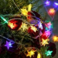 KOBWA Star String Lights,16ft 50 LED DIY Fairy Indoor/Outdoor Christmas Decorations Glowing Lights Battery Operated with 2 Modes for Garden,Patio,Bedroom,Christmas,Wedding,Birthday Party