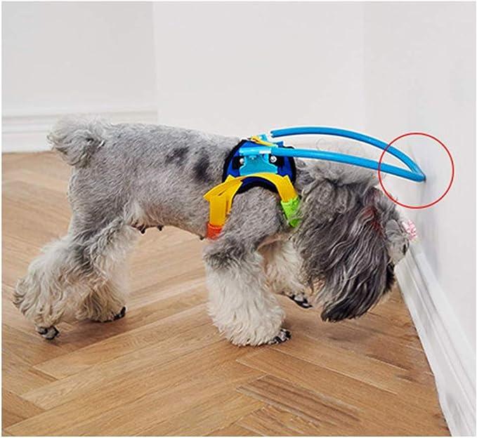 Dispositivo de guía para el arnés del Perro Ciego Collar del ...