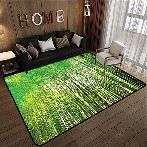 Outdoor Patio Rug,Bamboo Trees Decotaions,Large Area mat,5'10