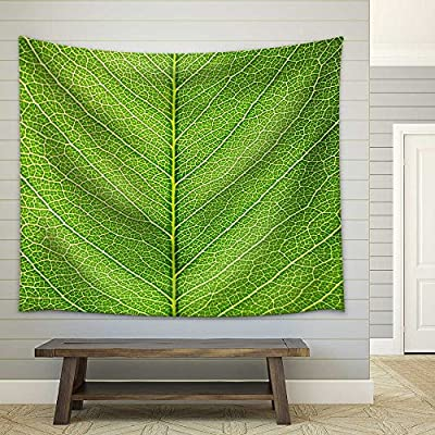 Incredible Print, Leaf of a Plant Close Up Fabric Wall, Made With Love
