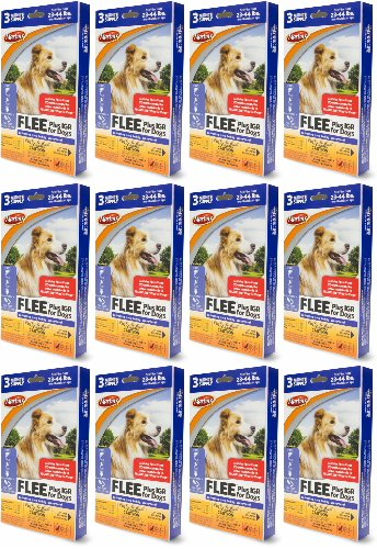 Martin's FLEE Plus IGR For Dogs 23-44lb 3 Month Supply, 12ct (36 Applicators)