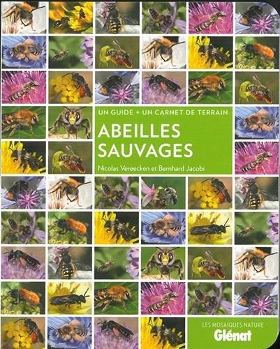 Abeilles sauvages Poche – 18 avril 2018 Bernhard Jacobi Nicolas Vereecken Glénat Livres 2344028188