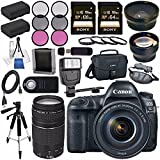 Canon EOS 5D Mark IV DSLR Camera with 24-105mm f/4L II Lens 1483C010 + Canon EF 75-300mm f/4-5.6 III Telephoto Zoom Lens + LPE-6 Lithium Ion Battery + Sony 128GB SDXC Card Bundle