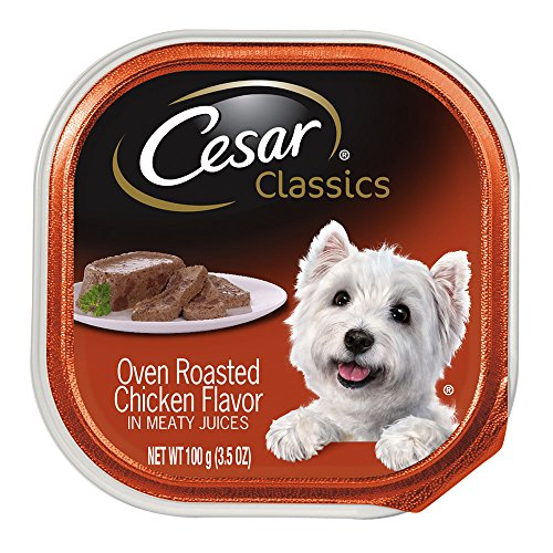 CESAR Canine Cuisine Oven Roasted Chicken Flavor Dog Food Trays 3.5 Ounces (Chicken Dog Vitamins)