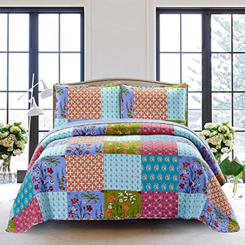 SLPR All is Bright 3-Piece Lightweight Printed Quilt Set (Queen) | with 2 Shams Pre-Washed All-Season Machine Washable Bedspread Coverlet Bright Quilt